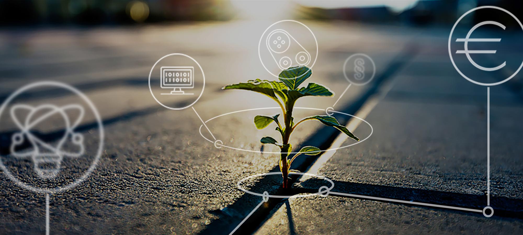 Business Innovation Partner für Geschäftsmodell-Innovationen