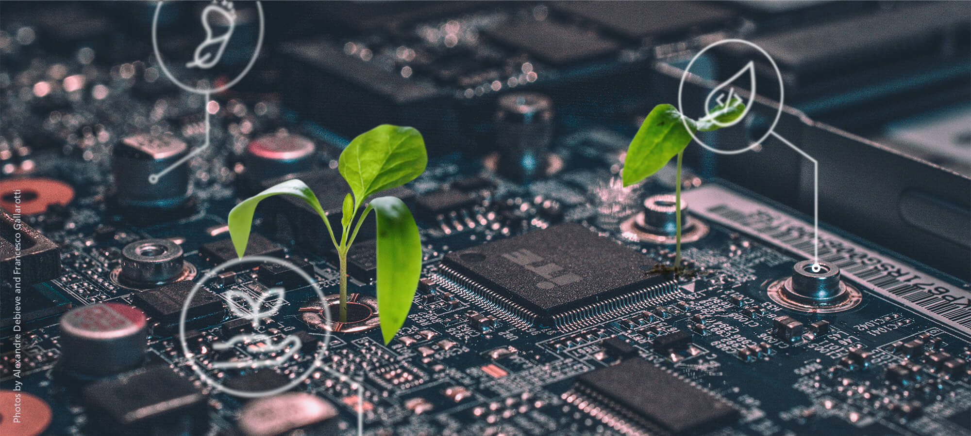 nachhaltige Softwareentwicklung